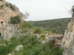 Флора внутри крепостных стен